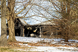 Garage at 202 North St. in Heyworth IL after a garage fire.  County records indicate the property is owned by Linda Robinson.