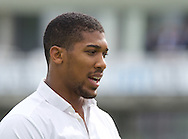 Heavyweight boxer Anthony Joshua MBE at the cricket for day two of the 5th Investec Ashes Test Match match at the Kia Oval, London<br /> Picture by Alan Stanford/Focus Images Ltd +44 7915 056117<br /> 21/08/2015