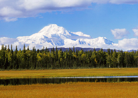 Alaska. Petersville Rd. Muskeg pond and Mt McKinley (20,320 ft).