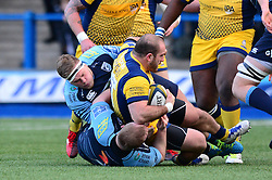 Val Rapava Ruskin of Worcester Warriors - Mandatory by-line: Dougie Allward/JMP - 04/02/2017 - RUGBY - BT Sport Cardiff Arms Park - Cardiff, Wales - Cardiff Blues v Worcester Warriors - Anglo Welsh Cup