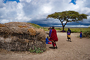 Acacia tree in a Masai Village. Maasai an ethnic group of semi-nomadic people. Photographed in Serengeti, Tanzania