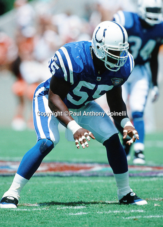 Indianapolis Colts linebacker Quentin Coryatt (55) gets set for the snap during the NFL football game against the Tampa Bay Buccaneers on Sept. 11, 1994 Tampa, Fla. The Bucs won the game 24-10. (©Paul Anthony Spinelli)