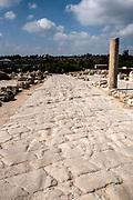 Israel, Lower Galilee, Zippori National Park The city of Zippori (Sepphoris) A Roman Byzantine period city with an abundance of mosaics Mosaic floor in the Cardo