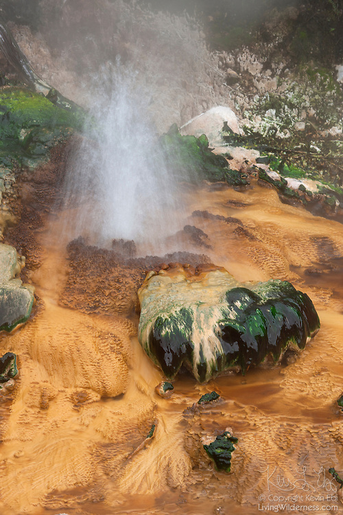 Water boils out of a small spring on the Birds Nest Terrace in the Waimangu Volcanic Rift Valley near Rotorua, New Zealand. The terrace is part of a hydrothermal system in 1886 by the volcanic eruption of Mount Tarawera. Waimangu means 'black water' in Māori, the indigenous language of New Zealand. The area was given that name because its largest geyser erupted water that was filled with mud and rocks.