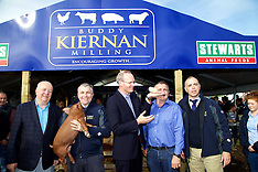 Buddy Kiernan Milling  at the National Ploughing Championships 2015