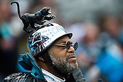 November 13, 2016: Carolina Panthers vs Kansas City Chiefs. Panthers fan