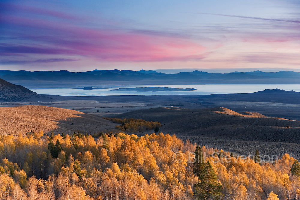An image of yellow autumn aspens and Mono Lake and the sunrise in California