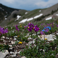 Shooting star on Bozeman Pass. Bridger Mountains near Bozeman, Montana.