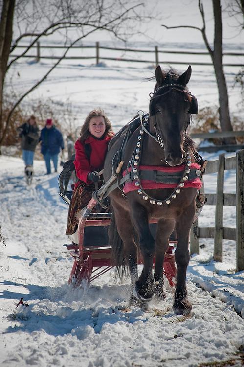 Horse drawn sleigh on a farm