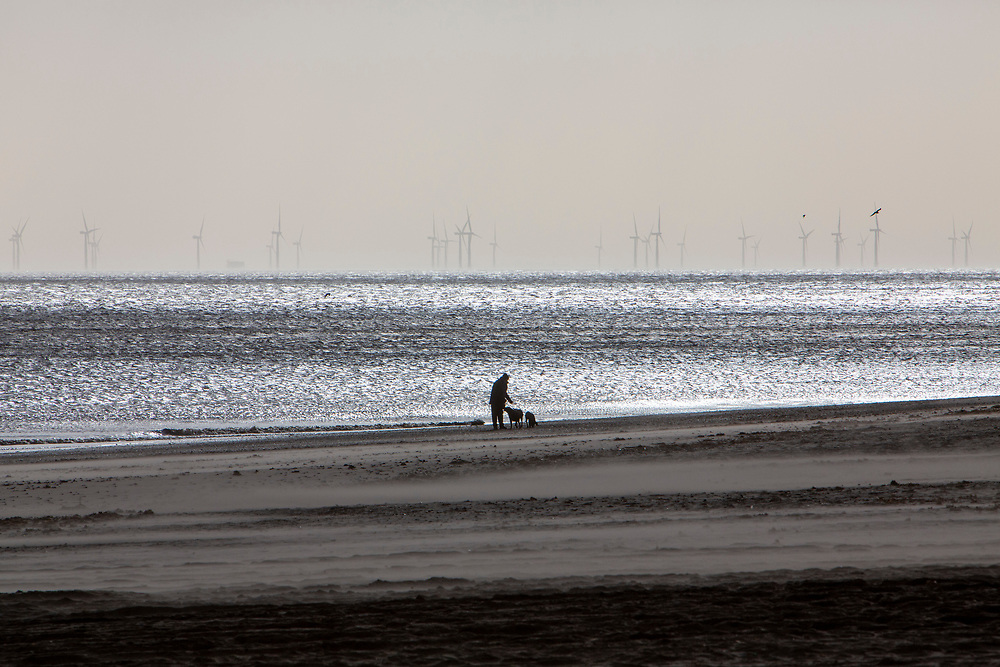 Dog walkers on Mablethorpe beach enjoy the winter sunshine with The Lincs Wind Farm in the distance.  It is a 270 MW offshore wind farm 8 kilometres (5.0 mi) off Skegness Lincolnshire, on the east coast of England in the North Sea. It cost over £1 billion to build including electrical transmission links and was completed in 2013. Skegness, Lincolnshire, United Kingdom.   (photo by Andrew Aitchison / In pictures via Getty Images)