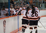 2011/03/12 - The RIT women's hockey team celebrates a goal against Adrian College in the NCAA quarterfinals at RIT's Ritter Arena. RIT defeated Adrian 10-1.