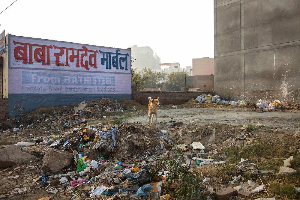 A Rohtak district, Haryana.
