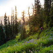 Andrew Whiteford rides Singletrack in eastern Idaho. Mail Cabin Trail.