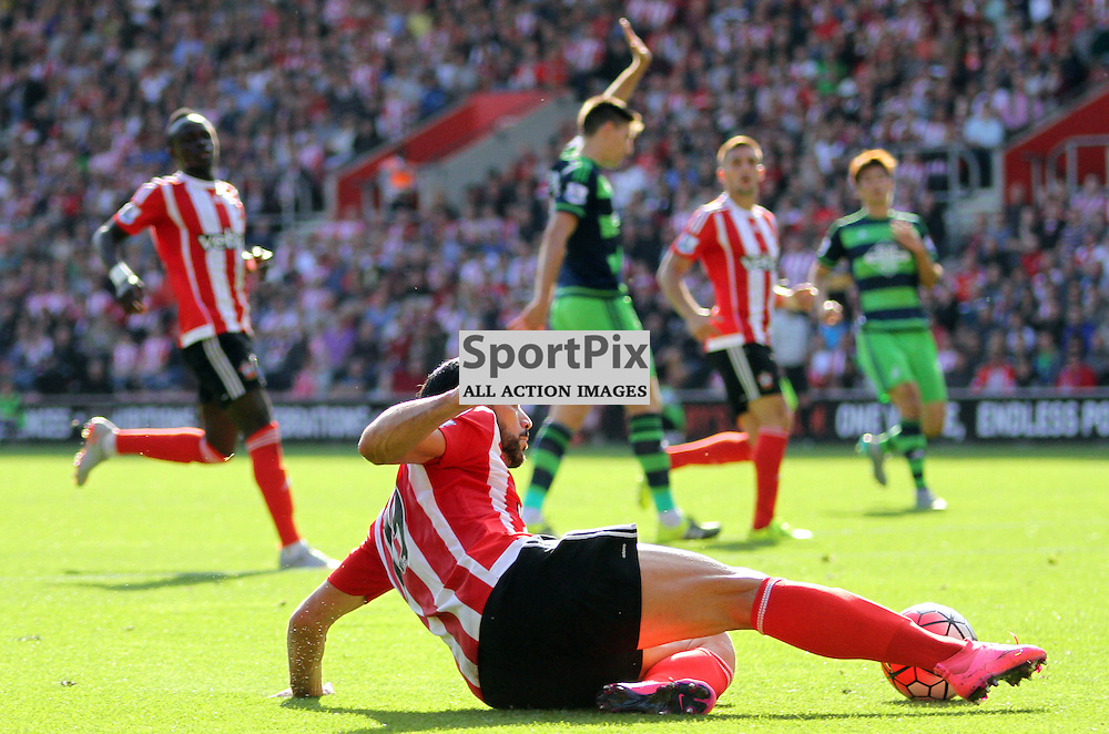 Graziano Pelle slides During Southampton vs Swansea on Saturday 26th September 2015.