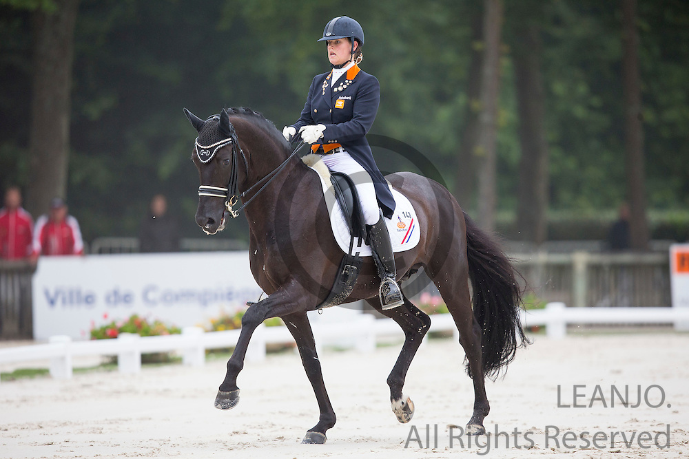 Dana van Lierop - TC Sting<br /> FEI European Dressage Championships for Young Riders and Juniors 2013<br /> &copy; DigiShots