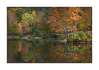 Vermont fall foliage reflection