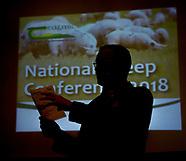 2018 Teagasc Sheep conf
