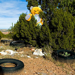 A large teddy bear sits in a tree at an illegal dump site near Window Rock, Arizona on the Navajo Indian Reservation. A lack of trash hauling services and places to put the garbage means that many resort to roadside dumping.