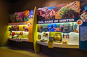 Visitor center interpretive display, Organ Pipe Cactus National Monument, Arizona USA