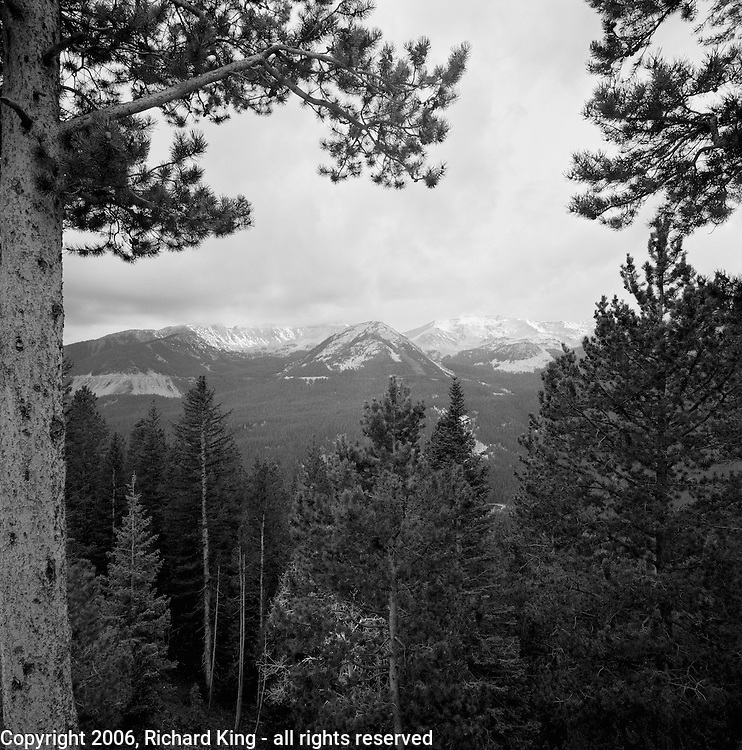 Never Summer Mountians, Rocky Mountain National Park, CO