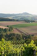 Landschaft und Weinberge Groß-Umstadt, Odenwald, Naturpark Bergstraße-Odenwald, Hessen, Deutschland   landscape and vine yards Groß-Umstadt, Gross-Umstadt, Odenwald, Hesse, Germany