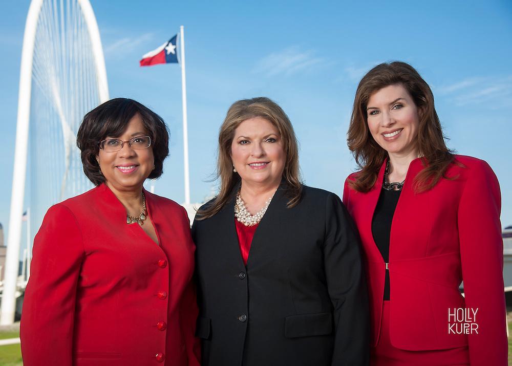 Portrait of Women Lawyers