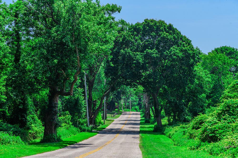 Country Road, Manhanset Rd, Shelter Island, NY