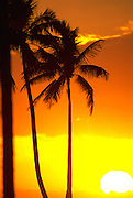 Sunset, Hawaii, USA<br />
