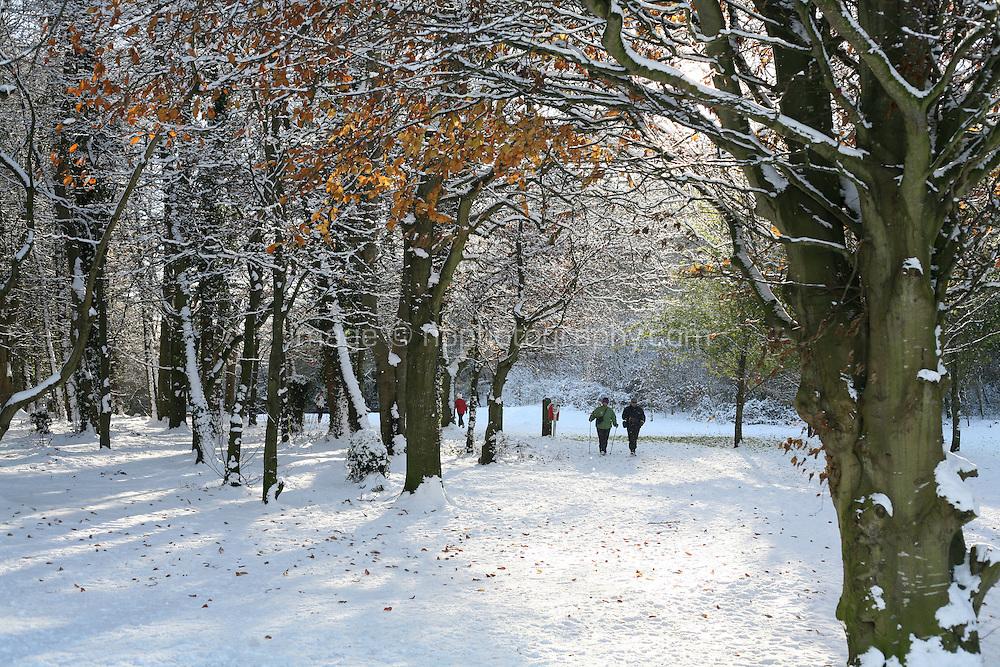 Walkers on Killiney Hill Dublin in the snow November 2010
