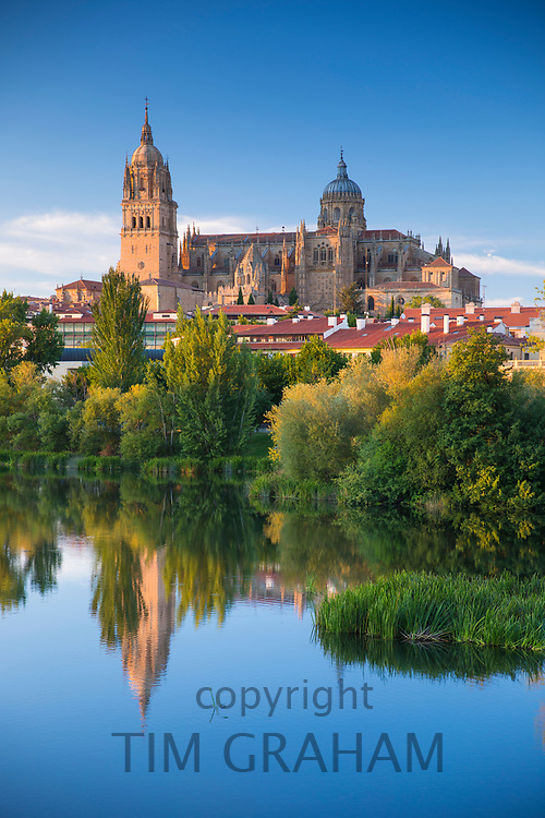 Salamanca - famous medieval cathedral and university city, reflected in Rio Tormes, Spain