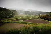 Katsurao, May 30 2011 - .(eng) Landscapes in Katsurao. The new evacuation area is made of valleys, forests, rice fields and small villages. Iitate village was considered as one of the most beautiful village in Japan...(fr) Paysages a Katsurao. .La zone irradiée est composee essentiellement de champs et de forets. A l'instar d'Iitate, classe parmis les plus beaux villages du Japon, la region est une succession de vllages nichés dans de magnifiques vallées.