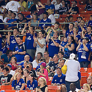 Everton fans celebrate in the 82 second minute after Gueye scores the  third goal of the match during MLS International friendly match between Everton FC of England and DC United. ..Everton FC Defeated DC United 3-1 Saturday, July 23, 2011, at  RFK Stadium in Washington DC.