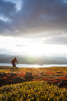 Rider - Chris Milner, Trail Name - Mount McIntyre Alpine, Whitehorse Yukon