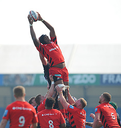 Dom Morris of Saracens Storm wins the lineout- Mandatory by-line: Nizaam Jones/JMP - 22/04/2019 - RUGBY - Sandy Park Stadium - Exeter, England - Exeter Braves v Saracens Storm - Premiership Rugby Shield