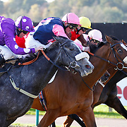 Tee It Up Tommo and Jim Crowley winning the 12.30 race