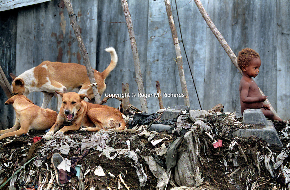 A baby sits on a pile of garbage near a pack of dogs in the neighborhood of Cite Soleil in Port-au-Prince,  Haiti, May 1995. (Photo by Roger M. Richards)