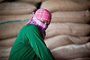 08 MAY 2010 - PATHUM THANI, THAILAND: A worker takes a break while stacking rice in the J&D Rice Group Ltd warehouse in Pathum Thani, about 30 miles north of Bangkok, Thailand. According to the UN Food and Agricultural Organization (FAO),Thailand's rice harvest is expected to be reduced by about 16% this year because of a persistent drought across the country but most pronounced in the northeast region of Thailand. A spokesperson for J&D said they get rice from across Thailand and so far there haven't been any shortages. J&D exports all of their rice China.  PHOTO BY JACK KURTZ