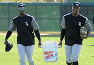 GLENDALE, ARIZONA - FEBRUARY 20:  Luis Robert (L) and Eloy Jimenez of the Chicago White Sox carry a bucket of baseballs during a spring training workout February 20, 2018 at Camelback Ranch in Glendale Arizona.  (Photo by Ron Vesely)  Subject:   Luis Robert; Eloy Jimenez