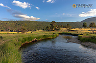 Big Thompson River in Moraine Park in Rocky Mountain National Park, Colorado, USA