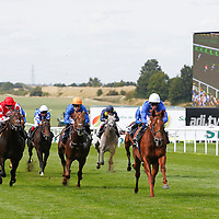 Newmarket 29th August