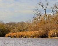 Images of the Altamaha River, Georgia in Fall near Darien.