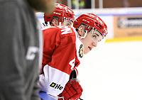 2020-02-12 | Ljungby, Sweden: Troja-Ljungby (4) Martin Fransson during the game between IF Troja / Ljungby and Huddinge IK at Ljungby Arena ( Photo by: Fredrik Sten | Swe Press Photo )<br /> <br /> Keywords: Ljungby, Icehockey, HockeyEttan, Ljungby Arena, IF Troja / Ljungby, Huddinge IK, fsth200212, ATG HockeyEttan, Allettan