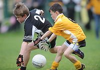 21 Aug 2016:  Action from the Boys U10 Boys Gaelic Football; Listowel, Co. Kerry (Black), v Clontibret, Co. Monaghan (yellow).  2016 Community Games National Festival 2016.  Athlone Institute of Technology, Athlone, Co. Westmeath. Picture: Caroline Quinn