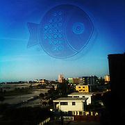 Photo by Matt Roth.Wednesday, January 4, 2012..iPhone photos from my family's vacation to Treasure Island Florida