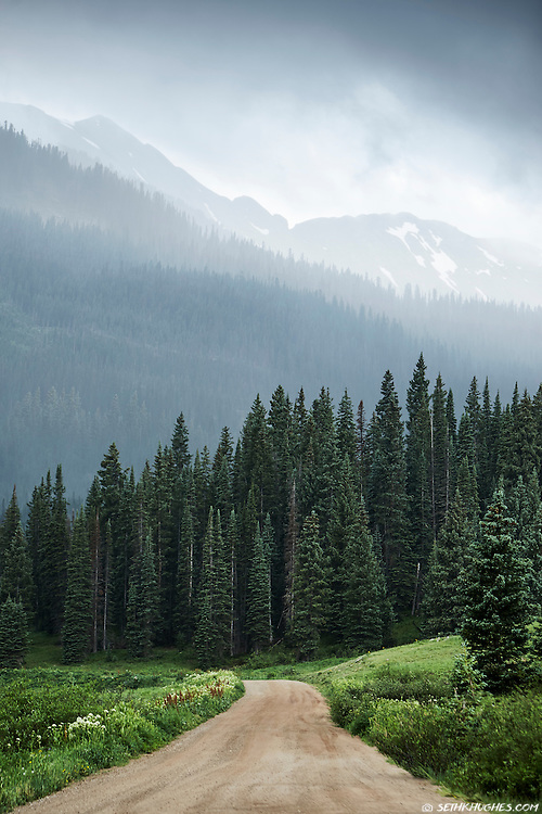Inclement weather descends over a forested dirt road which leads up a high mountain pass near Crested Butte, Colorado.