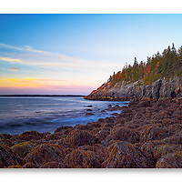 Otter Clifts shoreline at sunrise with moss-covered boulders in Acadia National Park Maine.