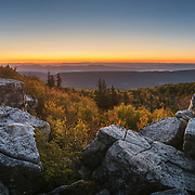 Sunrise. Dolly Sods Wilderness. Tucker County, West Virginia.