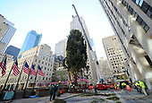 11/11/2017 Rockefeller Center Christmas Tree Arrival
