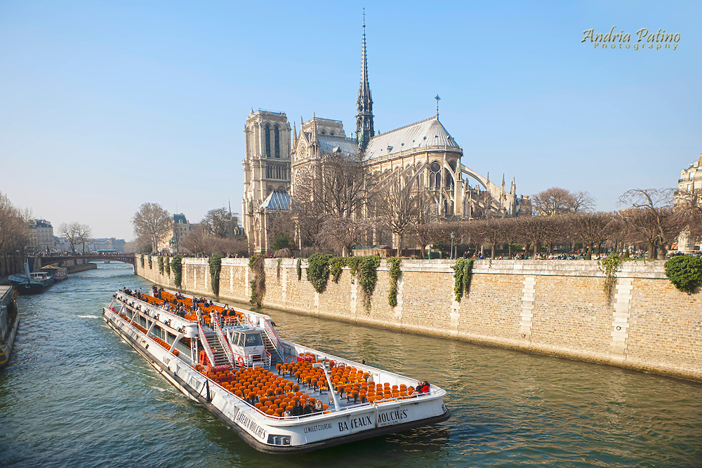 Sightseeing boat tour with Notre Dame in the background