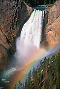"Spray from Yellowstone Falls refracts a rainbow in the ""Grand Canyon of the Yellowstone,"" Yellowstone National Park, Wyoming, USA. Yellowstone was the first national park in the world (1872), and UNESCO honored it as a World Heritage site in 1978."